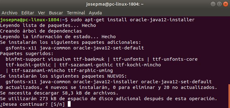 sudo apt-get install oracle-java12-installer